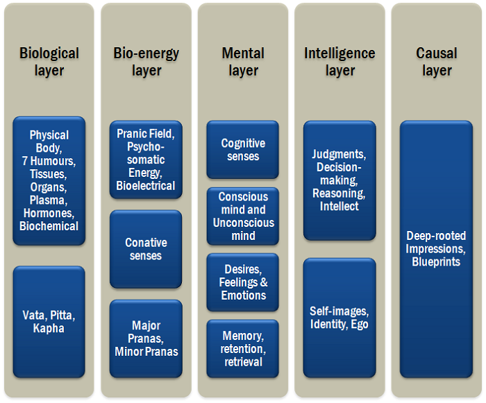Human body-mind constitution